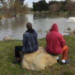 Two men sit on a rock, their backs to the camera, looking at a duck pond.