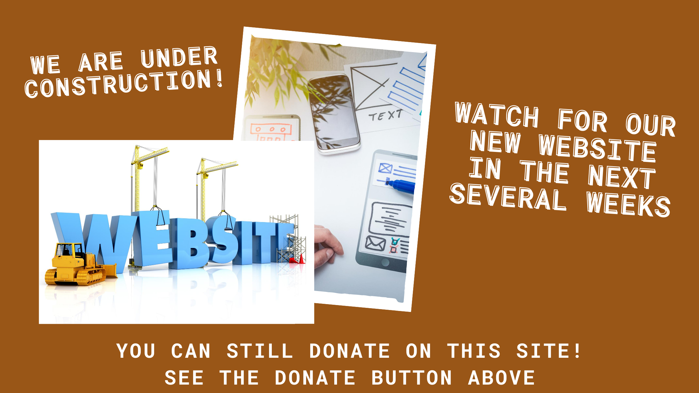 We are under construction! Watch for our new website in the next several weeks. You can still donate on this site! See the donate button above.